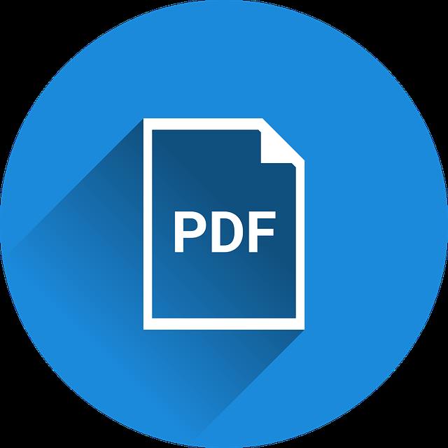 Logo einer PDF Datei